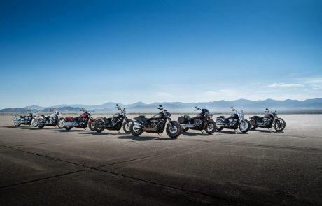 שיא של כל הזמנים: יותר ויותר אמריקנים מחזיקים אופנוע בחניה